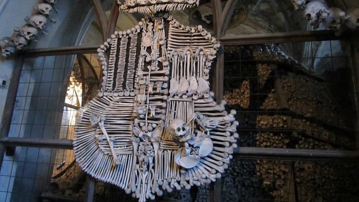 Герб из костей