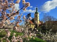 Погода в Праге в апреле