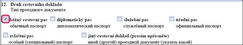 Образец заполнения анкеты на шенгенскую визу в Чехию — пункт 12