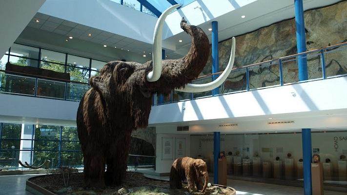 Моравский музей в Брно
