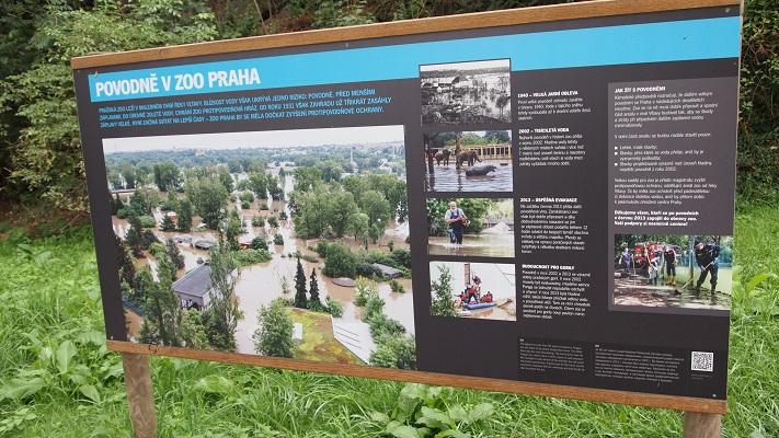 Наводнение в пражском зоопарке