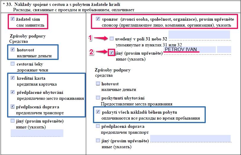 Образец заполнения анкеты на шенгенскую визу в Чехию — пункт 33