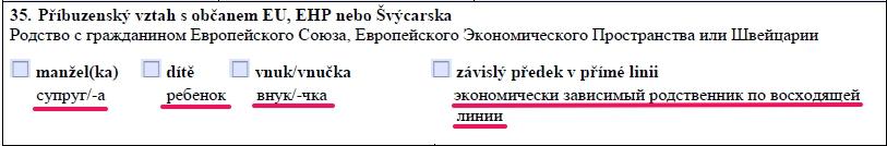 Образец заполнения анкеты на шенгенскую визу в Чехию — пункт 35