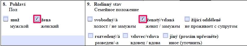 Образец заполнения анкеты на шенгенскую визу в Чехию — пункт 8,9