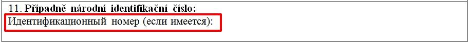 Образец заполнения анкеты на шенгенскую визу в Чехию — пункт 11
