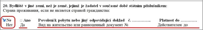 Образец заполнения анкеты на шенгенскую визу в Чехию — пункт 20